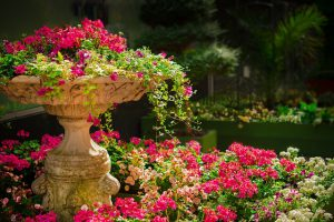 Jak zaaranżować ogród?